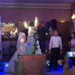 Kocaeli Düğün Organize